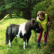black and white pony with person